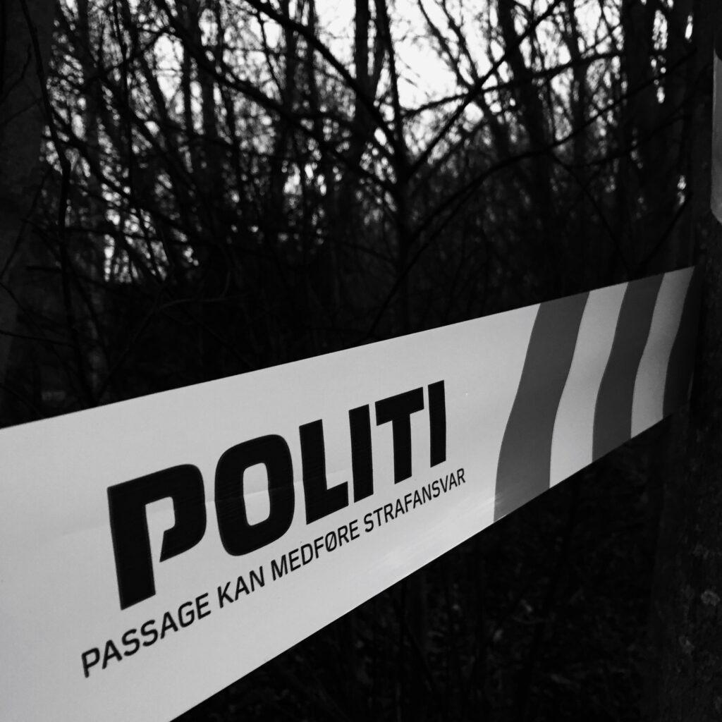 ulykke, politi, motorvej, vidne